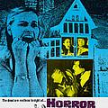 Horror House, Aka The Haunted House Of by Everett