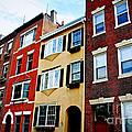 Houses In Boston by Elena Elisseeva