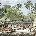 Human Sacrifice In Tahiti, Artwork by Sheila Terry