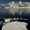 Icefloe In The Neumayer Channel by Colin Monteath