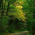 Indiana Road by Joyce Kimble Smith
