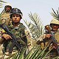 Iraqi Soldiers Conduct A Foot Patrol by Stocktrek Images