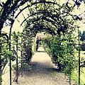 Irish Archway by Linde Townsend