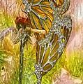 Iron Butterflys by Jack Zulli