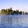 Island In Lake With Morning Fog by Elena Elisseeva