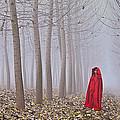 Lady In Red - 7 by Okan YILMAZ