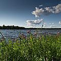 Lake View by Gary Eason