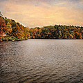 Lakeside Morning by Jai Johnson