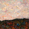 Land and Sky Print by James W Johnson