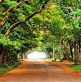 Landscape Painting Showing Road  by Parinya Kraivuttinun