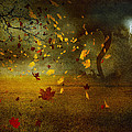 Late October by Svetlana Sewell