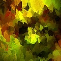 Late Summer Nature Abstract by David Lane