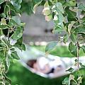 Lazy Days of Summer Print by Lisa Knechtel