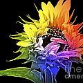Life is Like a Rainbow ... Print by Gwyn Newcombe