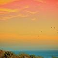 Light Of Sun Setting On  Malibu Beach by Albert Valles