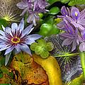 Lillies No. 6 by Anne Klar