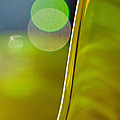 Lime Abstract Two by Dana Kern