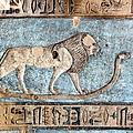 Lion At Dendera, Egypt by Joe & Clair Carnegie / Libyan Soup