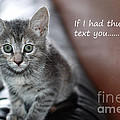 Little Kitten Greeting Card by Micah May