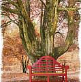 Little Red Bench by Debra and Dave Vanderlaan
