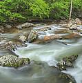 Little River Rapids Print by Dean Pennala