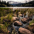 Loch Ard From The Reed Beds by John Farnan