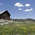 Log Cabin On The High Country Ranch by Rich Reid