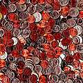 Loose Change . 8 To 12 Proportion by Wingsdomain Art and Photography