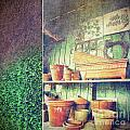 Lots Of Different Size Pots In The Shed by Sandra Cunningham