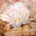 Love Letter IIi by Jai Johnson
