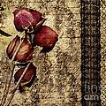 Love Letter by VIAINA Visual Artist