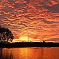 Magic Sunrise by Melany Sarafis