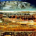 Mammoth Terrace - Yellowstone by Ellen Heaverlo