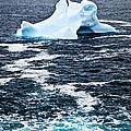 Melting iceberg Print by Elena Elisseeva