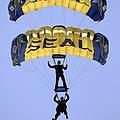 Members Of The U.s. Navy Parachute by Stocktrek Images