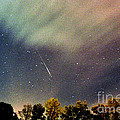 Meteor Perseid Meteor Shower by Thomas R Fletcher
