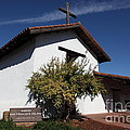 Mission Francisco Solano - Downtown Sonoma California - 5d19298 by Wingsdomain Art and Photography