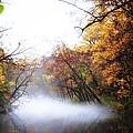 Misty Wissahickon by Bill Cannon