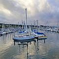 Monterey Harbor Marina - California by Brendan Reals