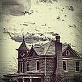 Moonlit Night by Kathy Jennings