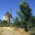 Moulin Of Daudet. Fontvieille. Provence by Bernard Jaubert