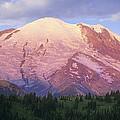 Mount Rainier At Sunrise Mount Rainier by Tim Fitzharris