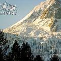Mountain Christmas 2 Austria Europe by Sabine Jacobs