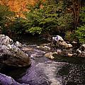 Mountain River With Rocks by Radoslav Nedelchev