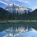 Mt Robson Highest Peak In The Canadian by Tim Fitzharris