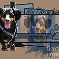 My Doxie Has Moxie - Dachshund by Renae Laughner