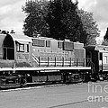 Napa Valley Railroad Wine Train Locomotive In Napa California Wine Country . Black And White . 7d899 by Wingsdomain Art and Photography