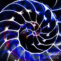 Nautilus Shell Ying And Yang - Electric - V1 - Blue by Wingsdomain Art and Photography