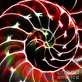 Nautilus Shell Ying And Yang - Electric - V1 - Red by Wingsdomain Art and Photography