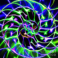 Nautilus Shell Ying And Yang - Electric - V2 - Blue-green by Wingsdomain Art and Photography